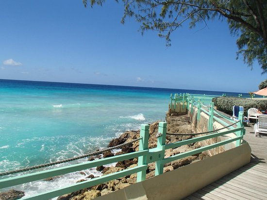 blue orchids beach hotel barbados reviews