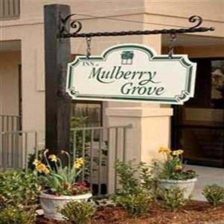 inn at mulberry grove reviews