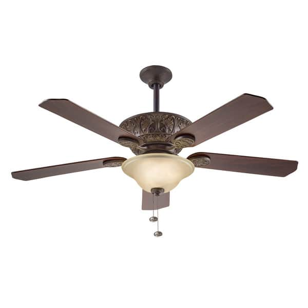 ceiling fan with light review