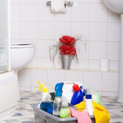 green apple cleaning ottawa reviews