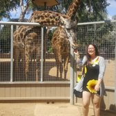 animals in action san diego zoo review