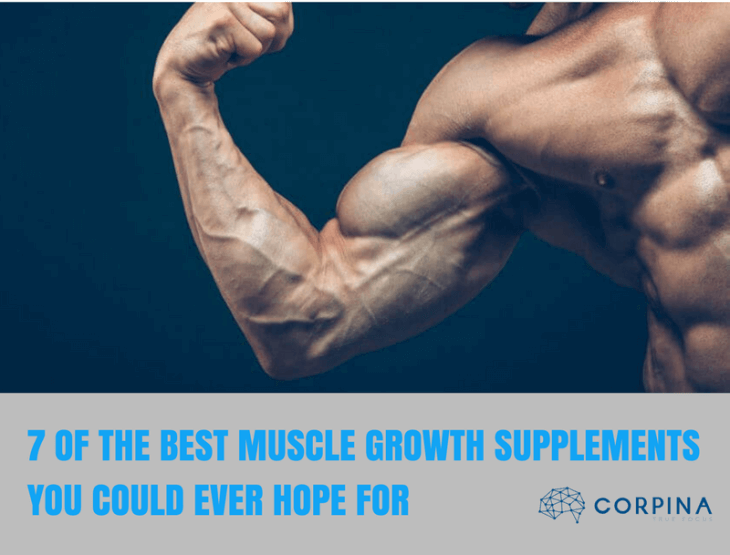 best muscle growth supplement reviews