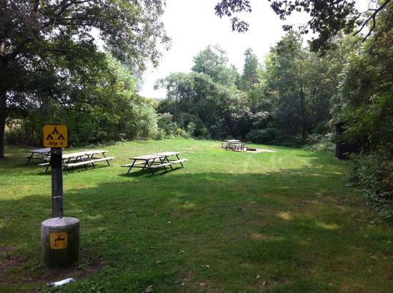 brant conservation area camping reviews