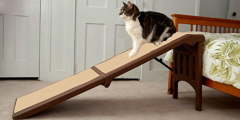 dog ramp for suv reviews