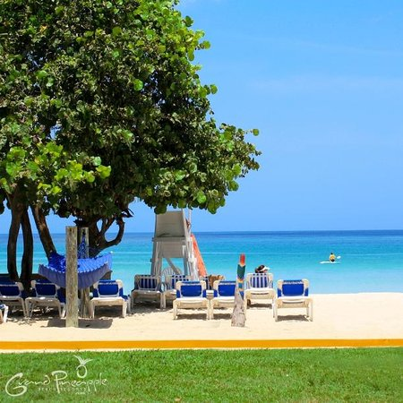 grand pineapple beach negril all inclusive reviews