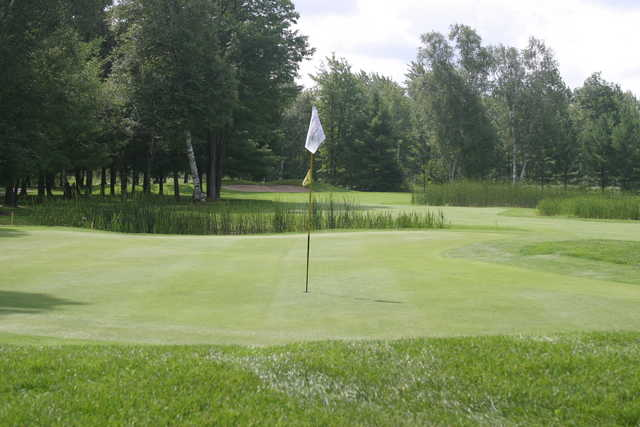 the loon golf course reviews